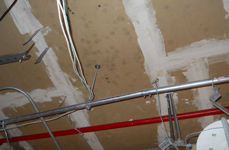 Image of a ceiling with mold. One Stop Environmental regularly performs mold remediation.