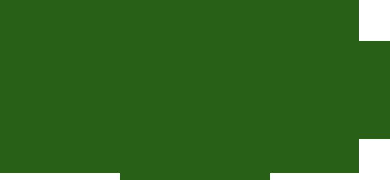 Remington Firing Range